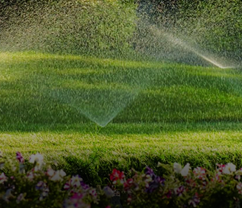 Landscaping and Irrigation Service in Charlotte NC